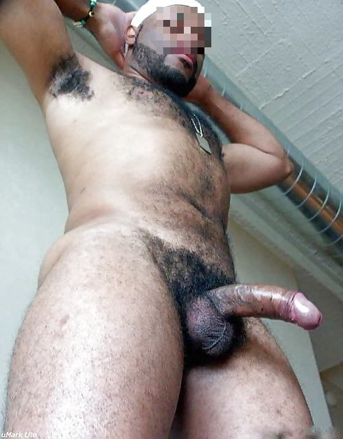 gay poilu francais rencontre gay 51
